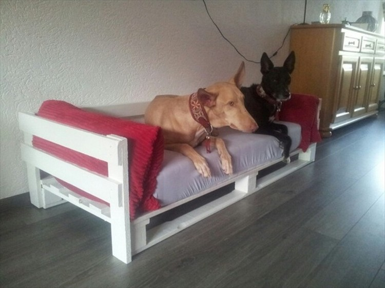 DIY Pallet Wood Dog Bed