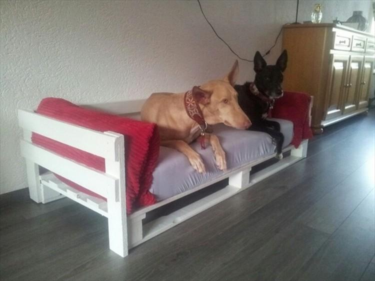 DIY Pallet Wood Dog Bed