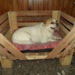 DIY Wood Pallet Dog Bed