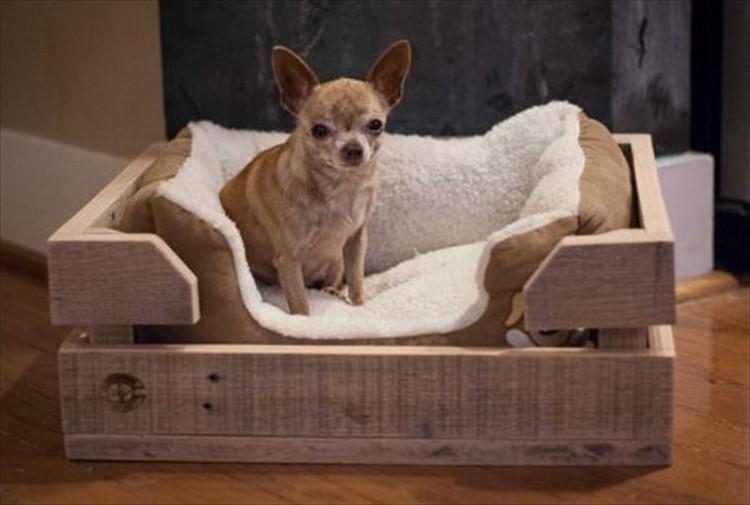 Pallet Wooden Dog Bed