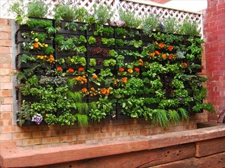 DIY Pallet Vertical Garden Projects