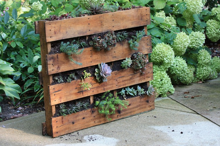 Diy pallet vertical garden projects pallet wood projects - Vertical gardens miniature oases ...