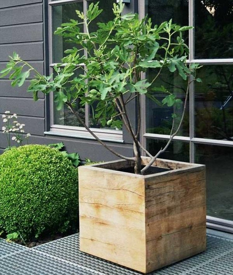 Planter Box from Wooden Pallets