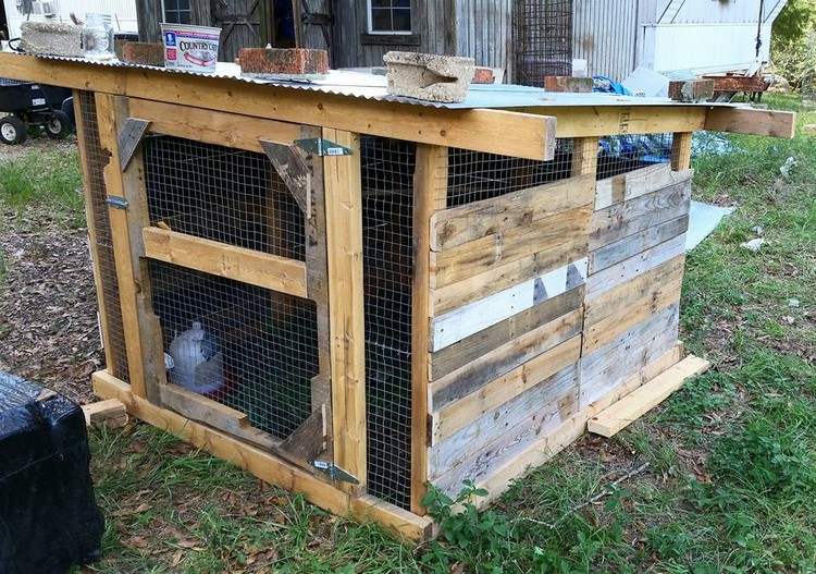 Chicken Coop from Pallet