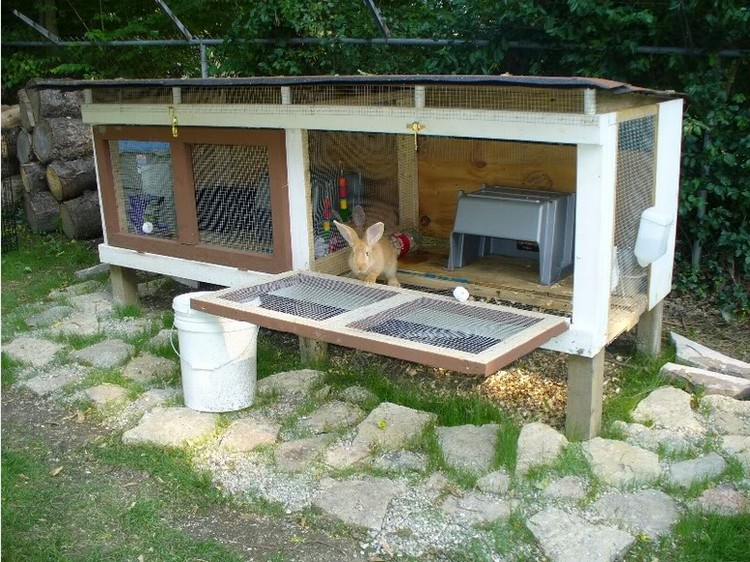 Rabbit hutches made from pallets pallet wood projects - How to make a rabbit cage ...