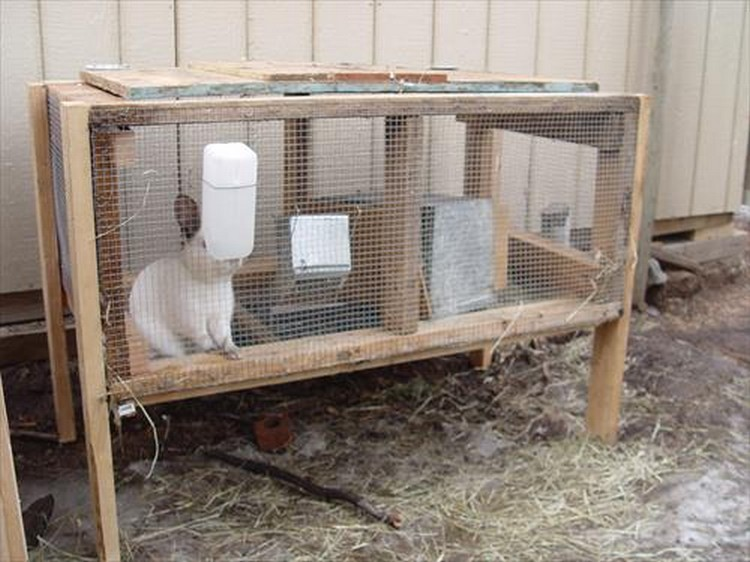 rabbit hutches made from pallets pallet wood projects