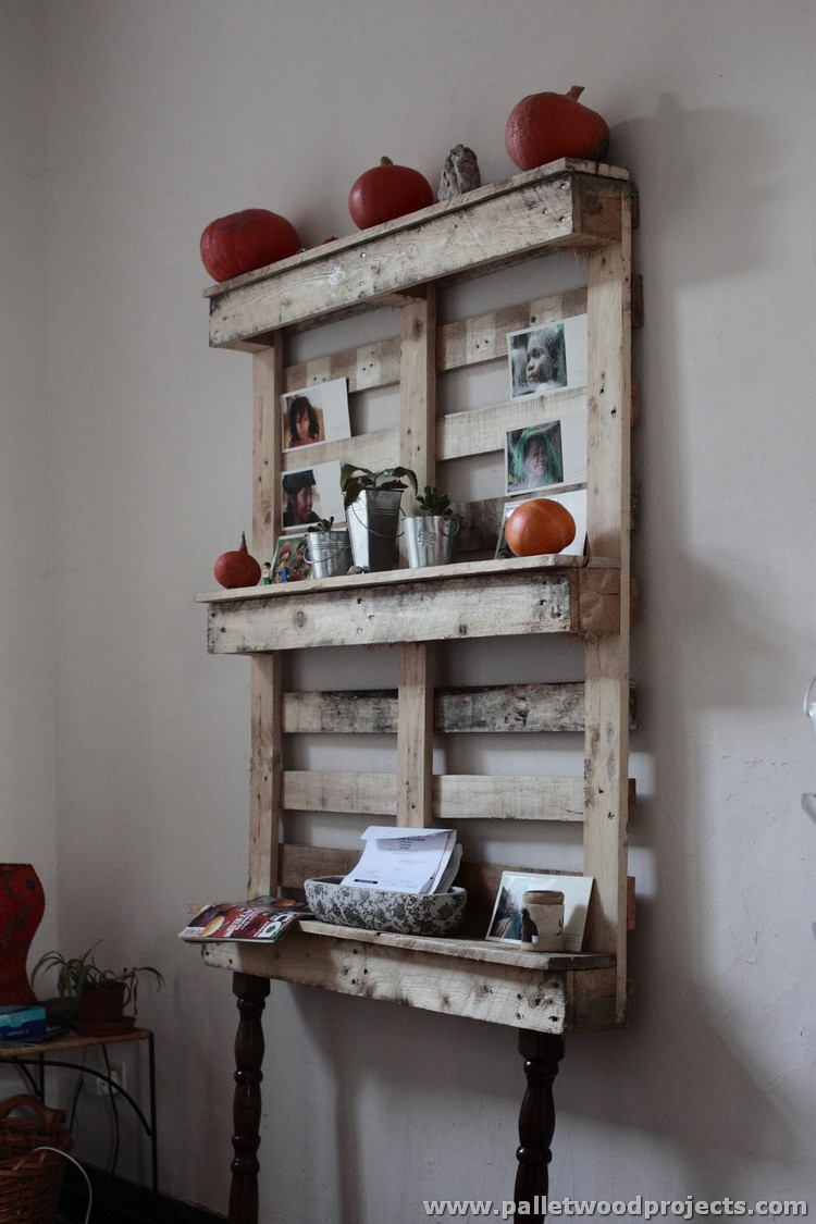 Shelves made with wood pallets pallet wood projects for Pallet furniture projects