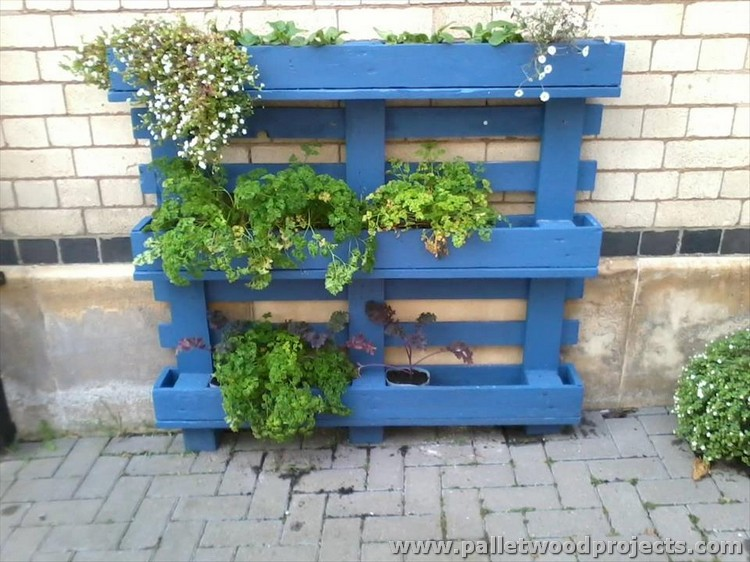 This is a big size wooden pallet planter which can be placed in your ...