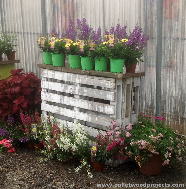 Pallet Garden Decor Ideas