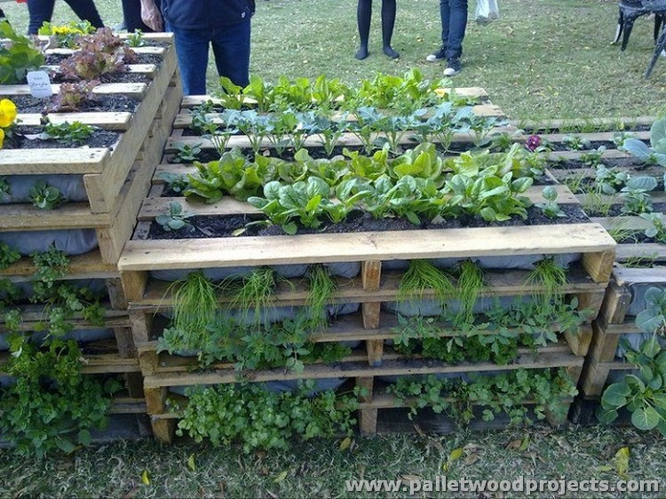 Wood pallet projects for garden pallet wood projects for Gardening using pallets