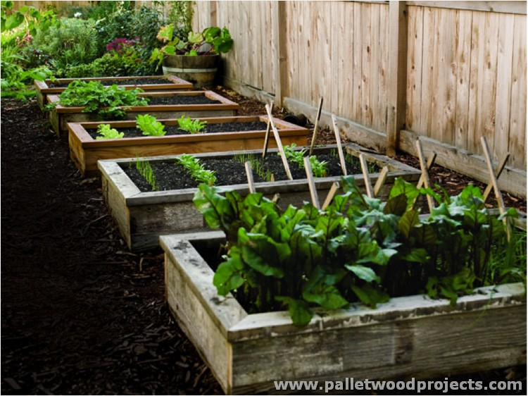 Pallet Raised Bed Ideas