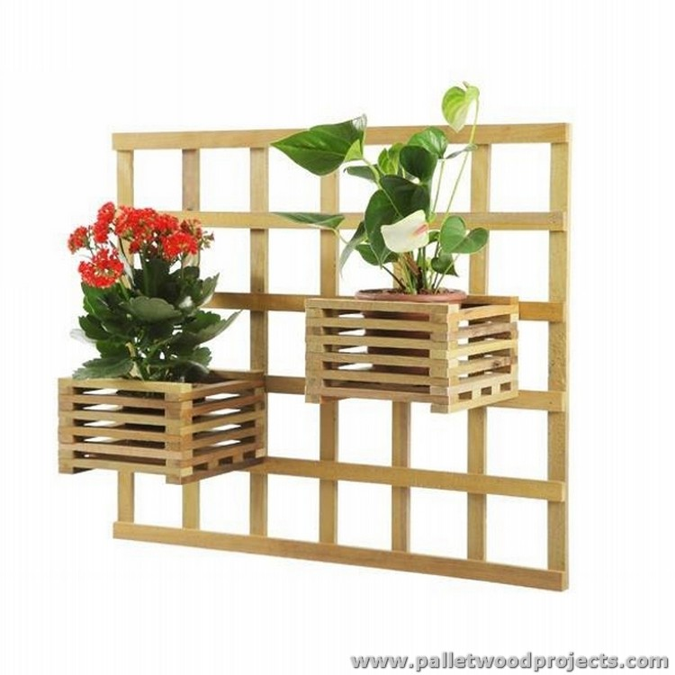 Pallet Wall Garden Projects