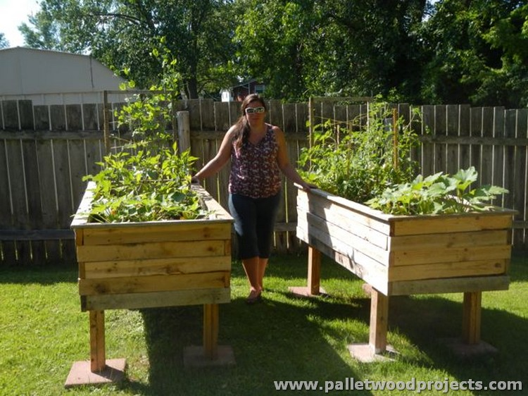 Pallet raised garden beds pallet wood projects for Making raised garden beds