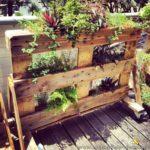Rolling Pallet Planter