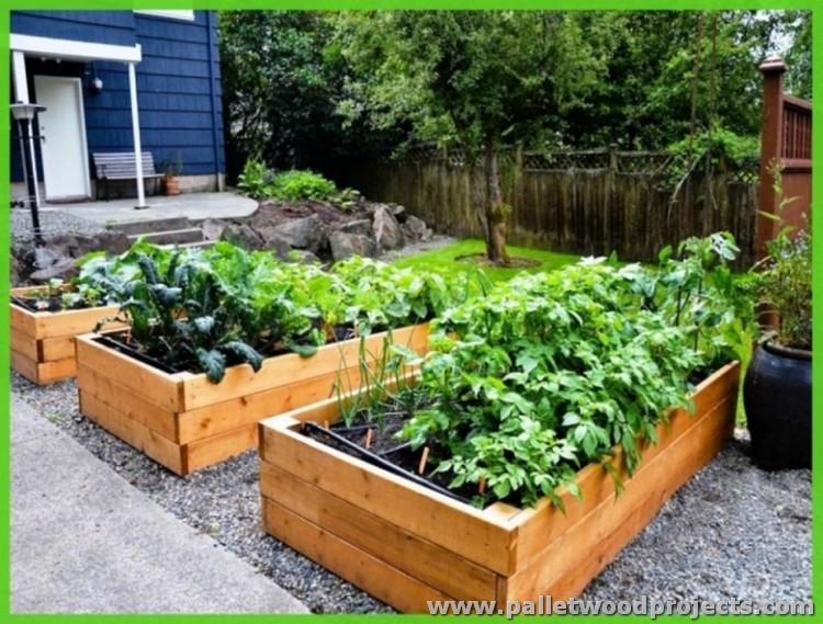 Pallet raised garden beds pallet wood projects for Garden designs with raised beds
