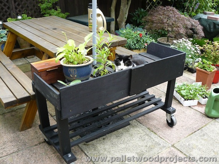 Pallet Plant Stand on Wheels