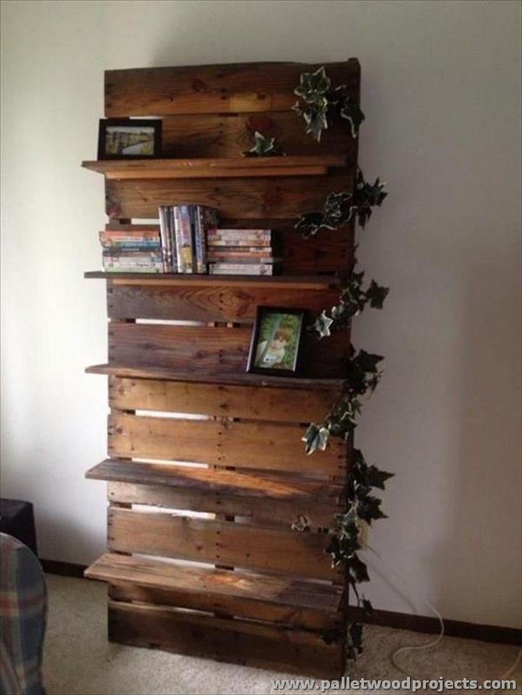 Ideas for wooden pallet shelves pallet wood projects for Diy cassette shelf