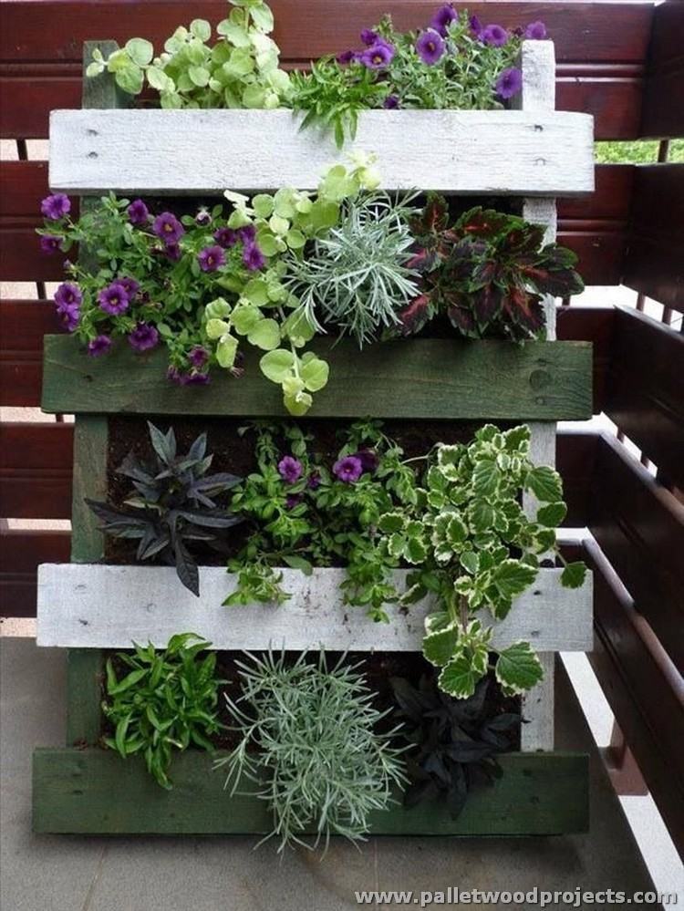 Outdoor ideas with wooden pallets pallet wood projects for Vertical pallet garden