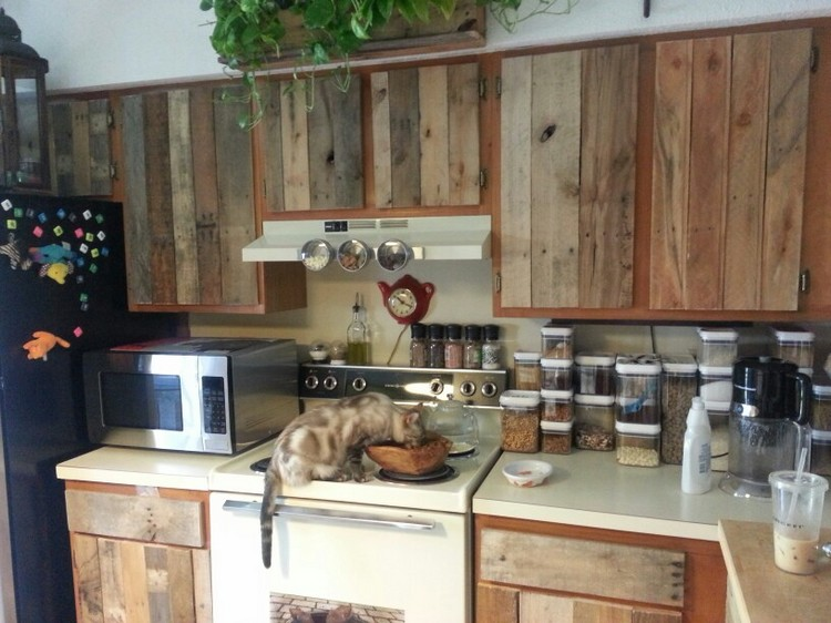 Recycled Pallet Kitchen Cabinets