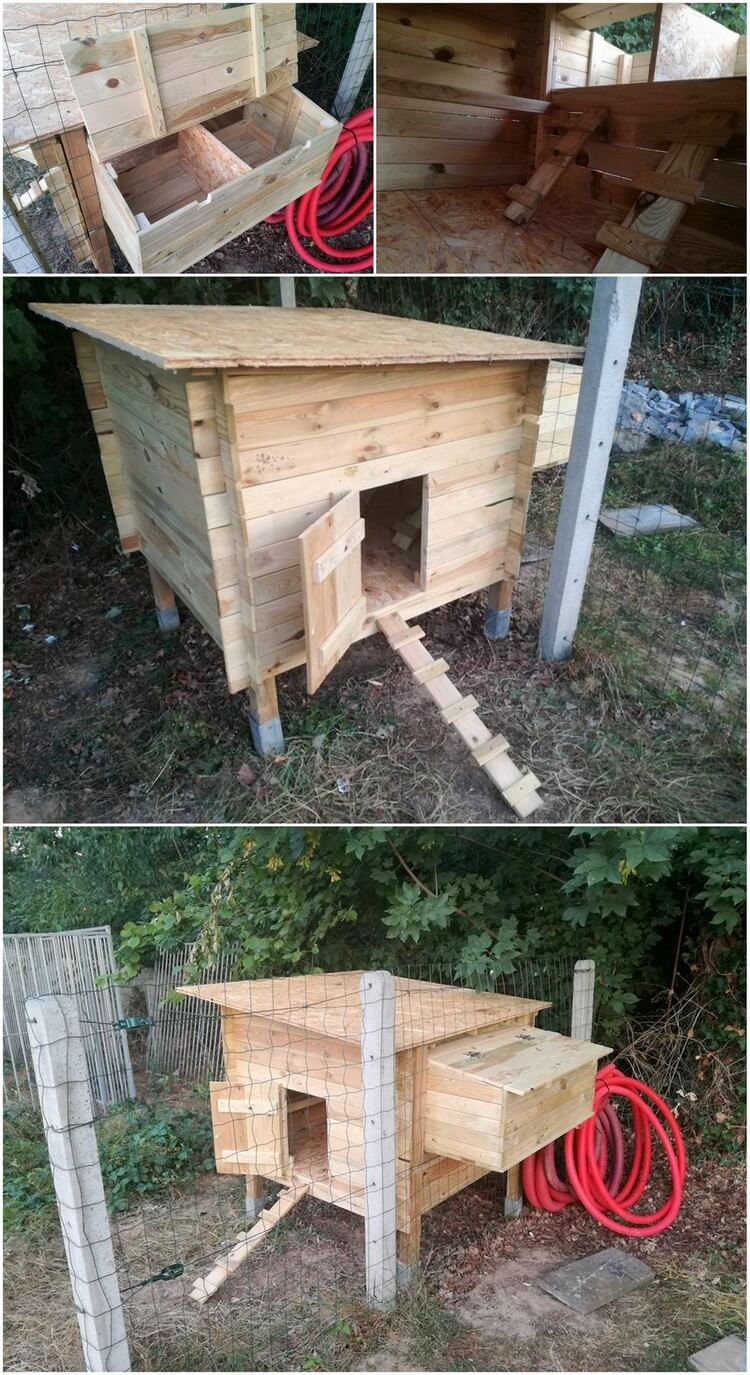 Amazing creations with reused wooden pallets pallet wood for Wood pallet chicken coop