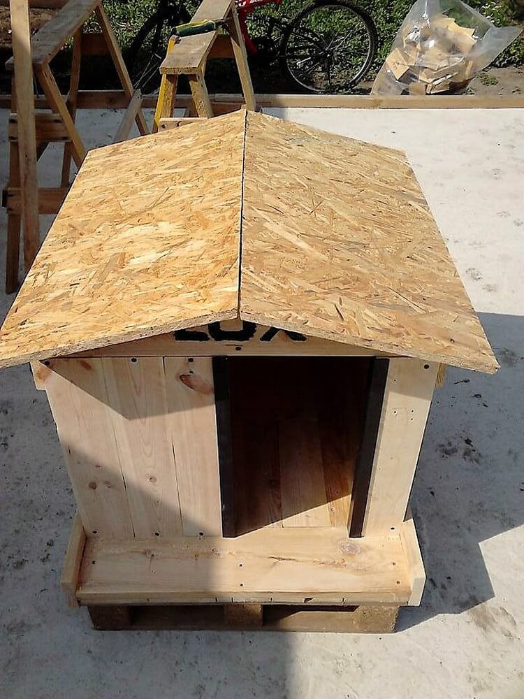 Building A Dog House With Pallets