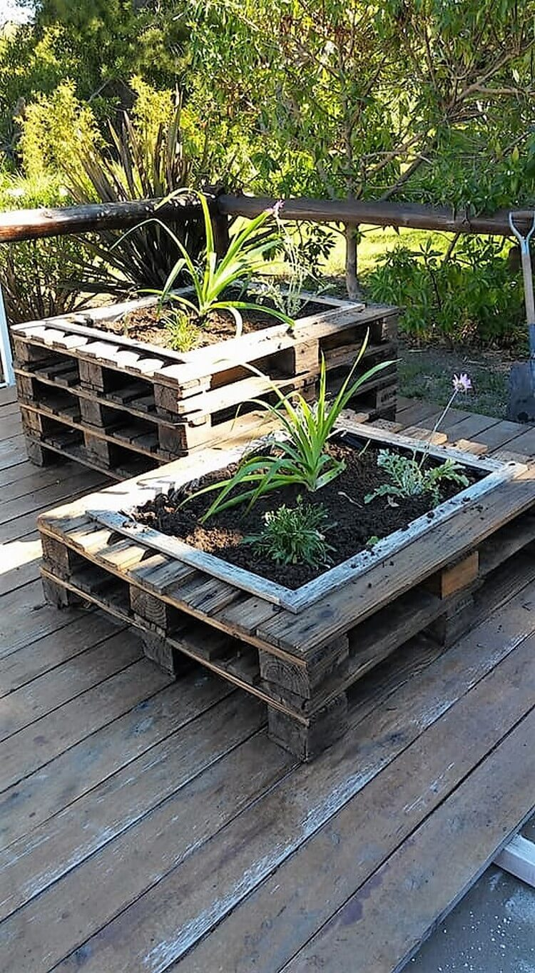 Shipping Pallet Planters
