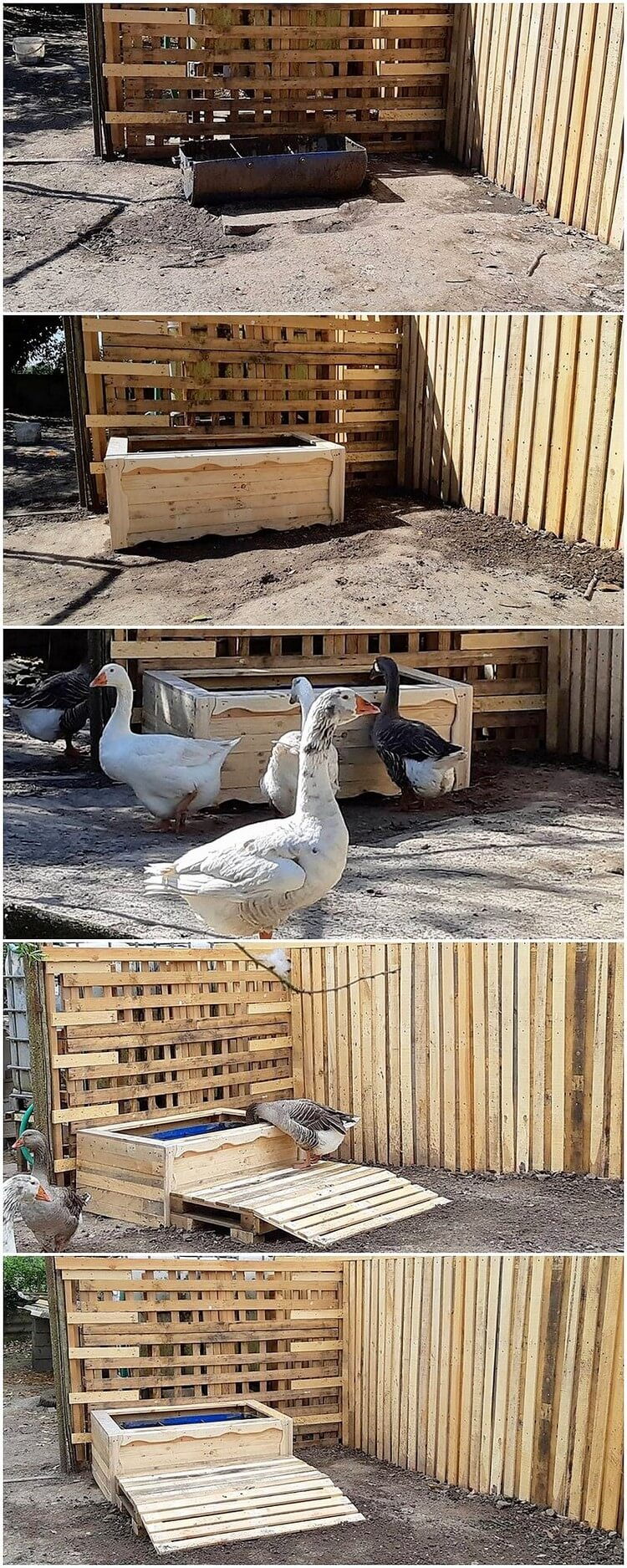 Pallet Creation for Ducks